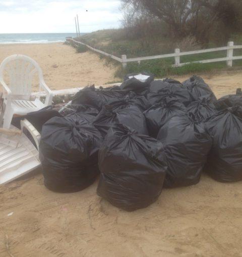 Aree Costiere – Rimosse 30 tonnellate di rifiuti