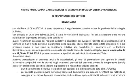AVVISO PUBBLICO PER L'ASSEGNAZIONE IN GESTIONE DI SPIAGGIA LIBERA ORGANIZZATA