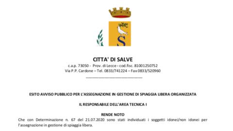 ESITO AVVISO PUBBLICO PER L'ASSEGNAZIONE IN GESTIONE DI SPIAGGIA LIBERA ORGANIZZATA