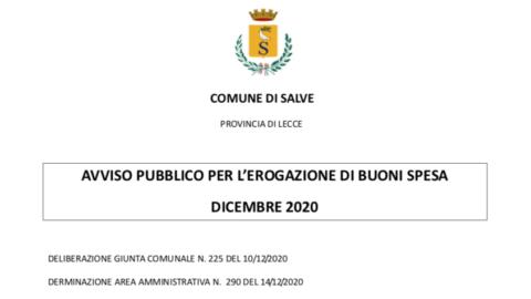 AVVISO PUBBLICO PER L'EROGAZIONE DI BUONI SPESA DICEMBRE 2020